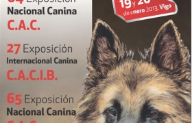 Exposición canina en Vigo