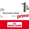 Promoción Royal Canin
