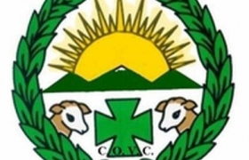 Diario veterinario: Se olvidan de los veterinarios durante la crisis del coronavirus.